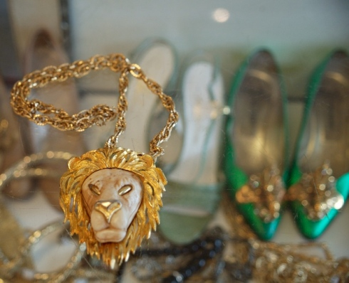 This Lion needs a home!!!  Look at the green shoes below...